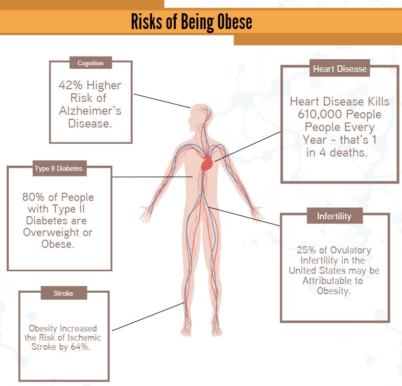 Obesity Risks