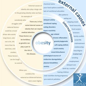 causes and solutions of obesity Evidence-based information on causes of obesity from hundreds of trustworthy sources for health and social care make better, quicker, evidence based decisions.