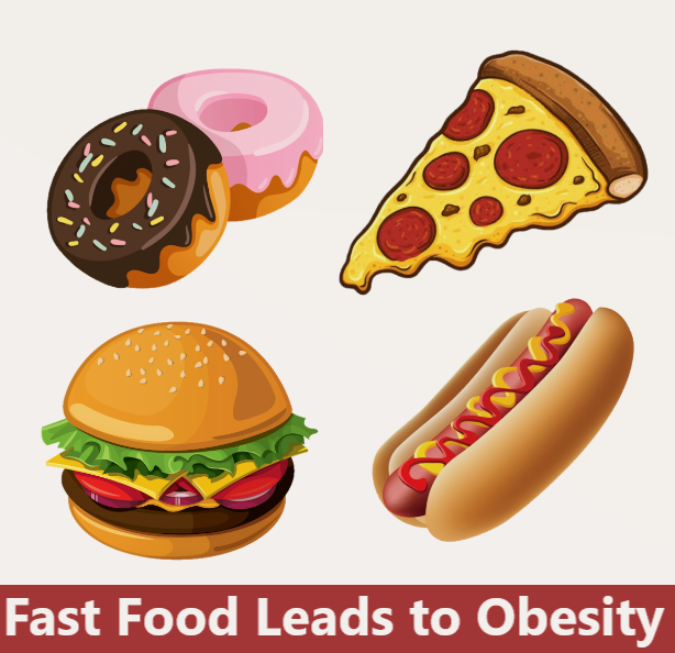 Fast Food Cause of Obesity - Mexico Bariatric Center