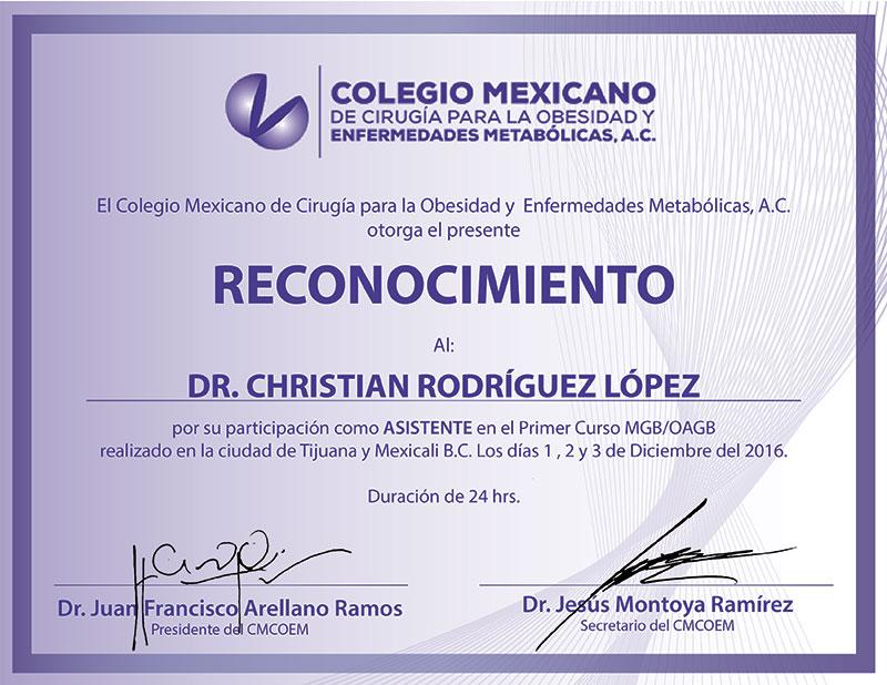 Dr. Christian Rodriguez Lopez - El Colegio Mexicano