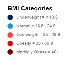 Body Mass Index Indicator - Mexico Bariatric Center