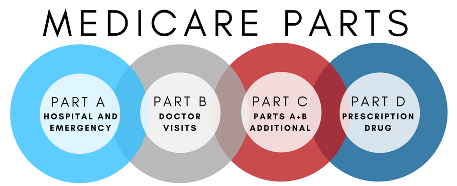 Medicare Coverage Parts A-D Infographic