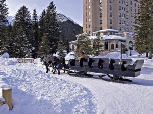 Horse Sled Alberta, Canada
