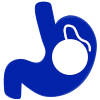 Spatz 3 Gastric Balloon Stomach Icon